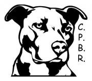 Castaway Pit Bull Rescue