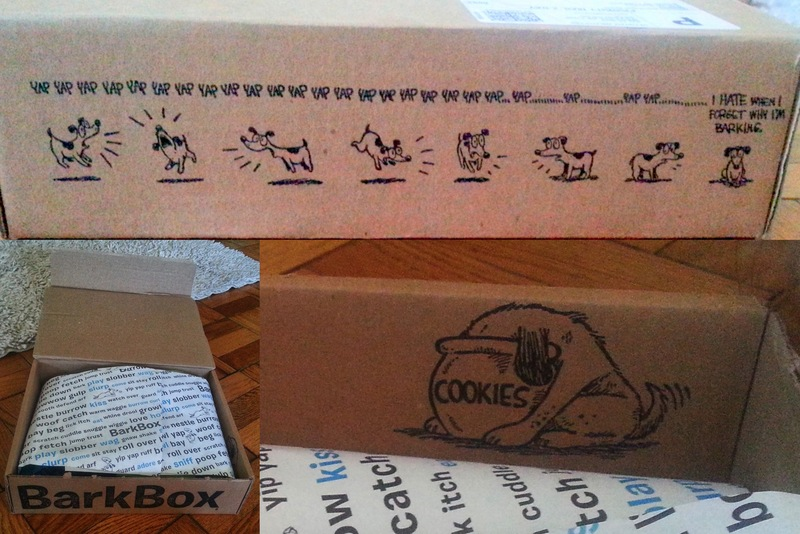 BarkBox Packaging