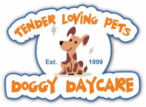 Tender Loving Pets Doggy Daycare