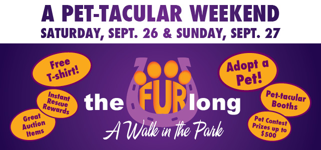 A Pet-Tacular Weekend