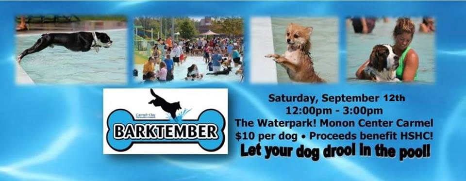BARKTEMBER - Dog Swim at the Waterpark!